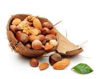 Nüsse in gebrochener Kokosnuss Stockbild