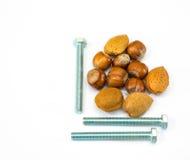 Nüsse - und - Bolzen 2 Stockfotografie