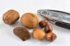 Nüsse und ein Nusscracker Stockfotos