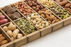 Nüsse und Samenzusammenfassung Lizenzfreies Stockfoto