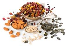 Nüsse und Trockenfrüchte Lizenzfreie Stockfotos