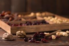 Nüsse und Trockenfrüchte lizenzfreies stockbild