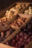 Nüsse und Trockenfrüchte stockbild