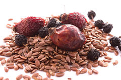 Nützliche Beeren und Samen Stockfoto