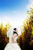 N亚裔女孩,一个美丽的新娘 库存照片