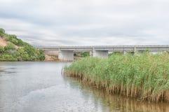 N2在星期天河的高速公路桥梁 免版税库存照片