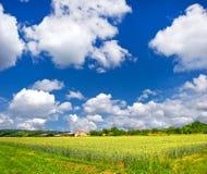 μπλε σίτος ουρανού τοπίω&n Στοκ Εικόνες