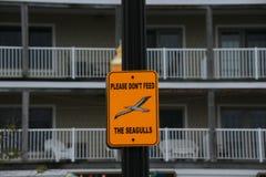 N'alimentez pas aux mouettes le signe Images libres de droits