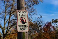 N'alimentez pas le signe d'oiseaux aquatiques Image libre de droits