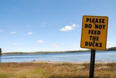 N'alimentez pas les canards Photos stock
