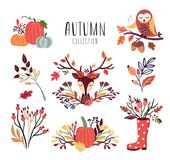 Autumnal arrangements collection, hand drawn vector design. N Autumnal arrangements collection with seasonal bouquets, pumpkins, deer head, autumnal branches vector illustration