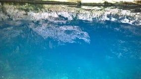 ¡ N Cenote Yucatà stockfoto