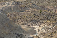 N Day Fossil Beds Oregon From Viewpoint Stock Photography