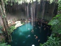¡ N de Cenote Yucatà Foto de Stock Royalty Free