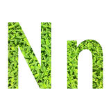 €œN di alfabeto inglese  del n†fatto da erba verde su fondo bianco per isolato Fotografia Stock Libera da Diritti