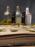 N?dv?ndig olja f?r arom och kosmetisk flaska bland torkade blommor, medicinsk ?rtvariation Naturlig sk?nhetsmedel och skincare so royaltyfria foton