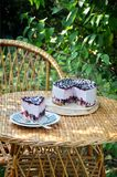Berry mousse cake. N the garden on the stand, berry cake, mousse royalty free stock photo
