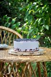 Berry mousse cake. N the garden on the stand, berry cake, mousse stock images