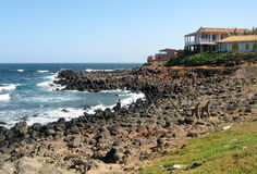 N'gor island coast. N'got island dark rock coast near Dakar in Senegal in Africa Stock Image