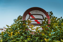 N'a interdit aucun signe de stationnement de voiture obscur par un arbre images libres de droits