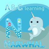N letter ABC kids Baby narwhal w rainbow horn vector illustration Cute cartoon narwhal vector Sea mammal vector Sea life theme Hap. Vector illustration of baby stock illustration