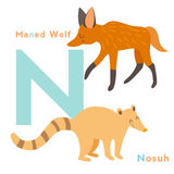 N letter animals set. English alphabet Royalty Free Stock Images