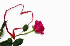 ??n mooie roze nam met hart-vormig die lint toe op witte achtergrond met ruimte voor uw tekst wordt ge?soleerd royalty-vrije stock fotografie