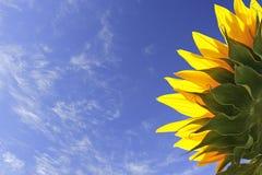 n nieba słońce Zdjęcie Stock