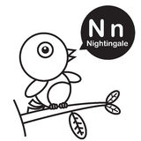 N Nightingale cartoon and alphabet for children to learning and Stock Image