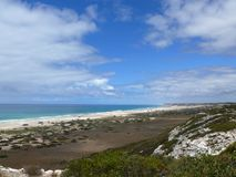 N.P. Nullarbor海边。 免版税图库摄影
