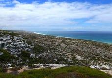 N.P. Nullarbor海边。 免版税库存图片