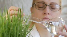N?rbild av en kvinnaforskare som ser inneh?llet av en exponeringsglasflaska med en klar flytande bredvid v?xa gr?nt stock video