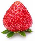 Één rijk aardbeifruit dat op een wit wordt geïsoleerd. Stock Foto