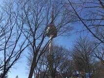 N Seoel verse de winter van de torenschoonheid stock afbeeldingen