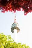 N seoul tower Stock Photos