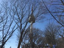 N Seoul tower beauty winter fresh. N seoul tower Stock Images