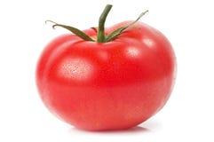 Één tomaat Stock Afbeeldingen