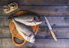 N a wooden table cutting board with fresh raw dorado. Fish gutted, near the knife, salt and pepper - top view Royalty Free Stock Images