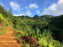 Na梵语在考艾岛海岛,夏威夷- Kalalau足迹上的海岸峭壁 库存图片