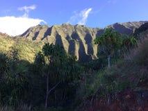 Na梵语在考艾岛海岛,夏威夷- Kalalau足迹上的海岸峭壁 免版税库存照片