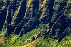 Na梵语峭壁美好的风景细节,考艾岛 免版税图库摄影