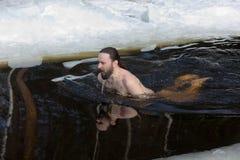 Na água fria Foto de Stock