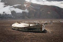 Na Łudzenie wyspie stara łódź Fotografia Stock