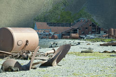 Na Łudzenie Wyspie wieloryb stara stacja, Antarctica Obraz Royalty Free