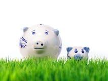 Na świeżej trawie miniaturowe matek i dziecka świnie obraz stock