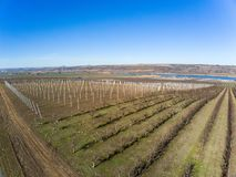 Na agricultura dormente do inverno em uma área rural fotos de stock royalty free