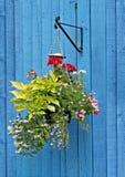 Na błękit ogrodzeniu wiszący kosz obrazy royalty free