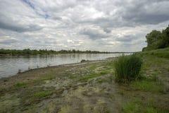 Na bankach rzeka na lata popołudniu zdjęcie stock