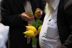 Na bazarze citron- Fotografia Royalty Free