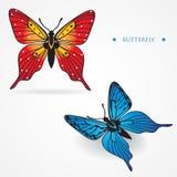 Na biały półdupkach dwa różnego stubarwnego motyla Zdjęcie Royalty Free